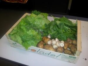 Photographie du panier (salade, navets, pommes de terre, radis, sarriette, épinard)
